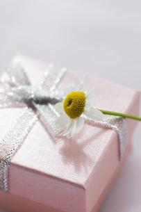 プレゼントBOXの写真素材 [FYI04685457]