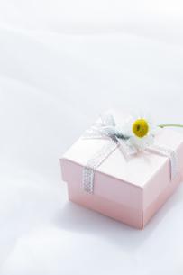 プレゼントBOXの写真素材 [FYI04685458]