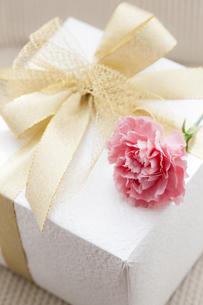 プレゼントBOXとカーネーションの写真素材 [FYI04685472]