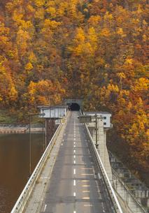 紅葉に囲まれたダムの上の道の写真素材 [FYI04685532]