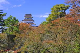 秋の会津若松城の写真素材 [FYI04685665]