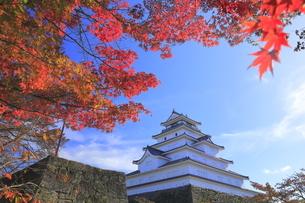 会津若松城と紅葉の写真素材 [FYI04685692]