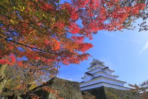 会津若松城と紅葉の写真素材 [FYI04685693]