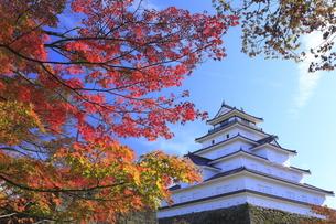会津若松城と紅葉の写真素材 [FYI04685694]