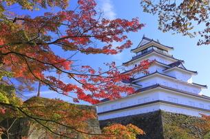 会津若松城と紅葉の写真素材 [FYI04685696]