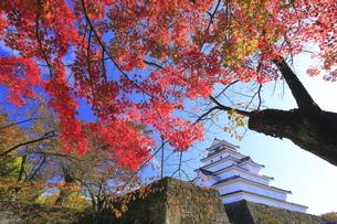会津若松城と紅葉の写真素材 [FYI04685697]