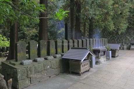 飯盛山の白虎隊十九士の墓の写真素材 [FYI04685707]