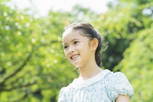 女の子 夏の写真素材 [FYI04686482]