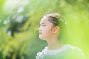 女の子 夏の写真素材 [FYI04686509]