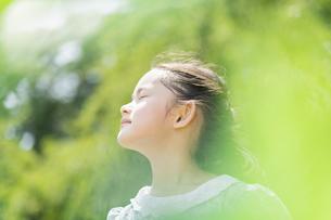 女の子 夏の写真素材 [FYI04686511]