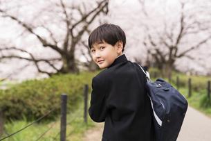 中学生 春の写真素材 [FYI04686537]
