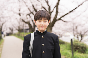中学生 春の写真素材 [FYI04686555]