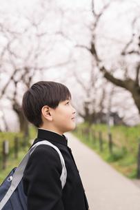 中学生 春の写真素材 [FYI04686557]