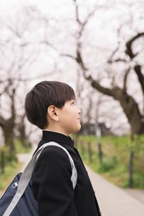 中学生 春の写真素材 [FYI04686559]