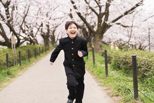 中学生 春の写真素材 [FYI04686568]