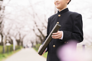 中学生 春の写真素材 [FYI04686572]