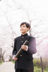 中学生 春の写真素材 [FYI04686575]