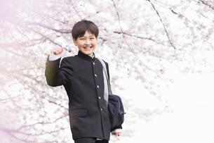 中学生 春の写真素材 [FYI04686602]