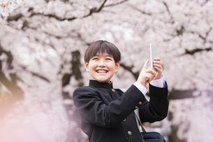 中学生 春の写真素材 [FYI04686610]