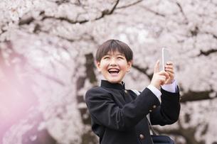 中学生 春の写真素材 [FYI04686611]