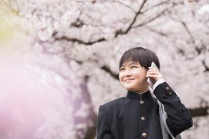 中学生 春の写真素材 [FYI04686615]