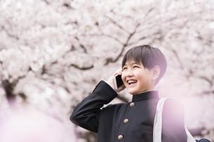 中学生 春の写真素材 [FYI04686618]