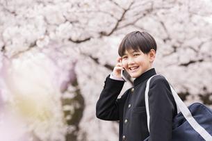 中学生 春の写真素材 [FYI04686622]
