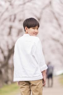 男の子 春の写真素材 [FYI04686624]