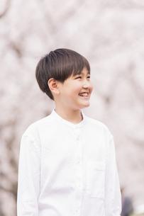 男の子 春の写真素材 [FYI04686627]