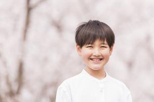 男の子 春の写真素材 [FYI04686629]