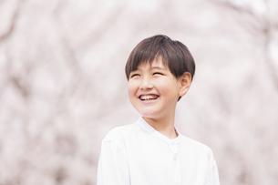 男の子 春の写真素材 [FYI04686632]