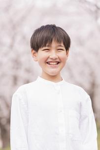 男の子 春の写真素材 [FYI04686633]