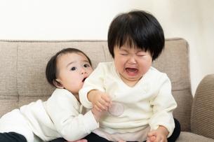 赤ちゃんの写真素材 [FYI04687999]