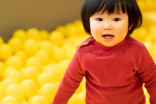 日本人女の子の写真素材 [FYI04688306]