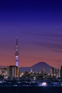富士山とスカイツリーの夜景の写真素材 [FYI04689294]