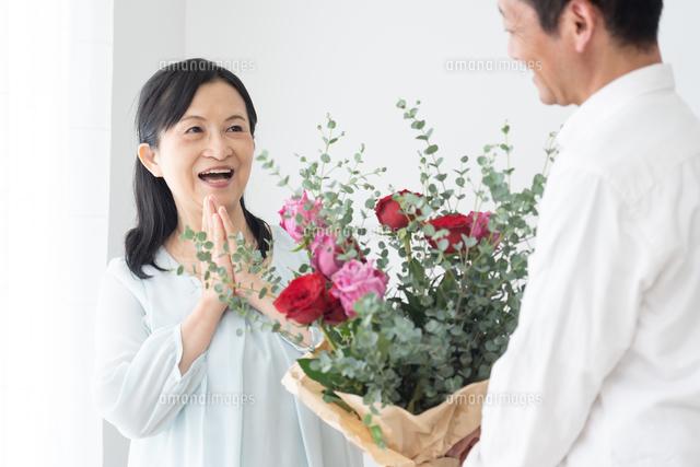日本人シニア夫婦の写真素材 [FYI04691056]