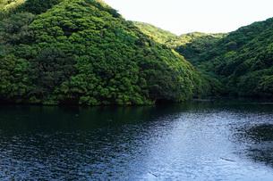 ダム・水源イメージの写真素材 [FYI04700147]