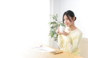 オフィスでコーヒーを飲む女性の写真素材 [FYI04701054]