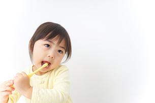 歯磨きをする子どもの写真素材 [FYI04701261]