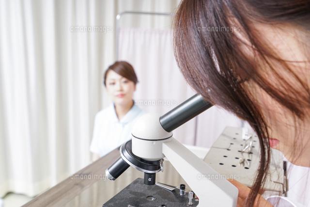 顕微鏡を見る医師と看護師の写真素材 [FYI04702869]