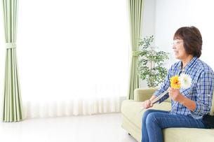 祖母に花をあげる子どもの写真素材 [FYI04703234]