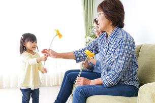 おばあちゃんにお花を渡す子供の写真素材 [FYI04703251]