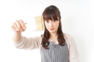 DIYをする女性の写真素材 [FYI04704004]