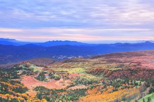 秋の渋峠より朝焼け雲と芳ヶ平の紅葉の写真素材 [FYI04704281]