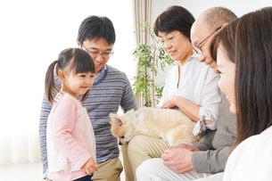 犬の世話をする3世代家族の写真素材 [FYI04704342]