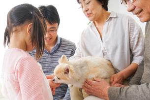 犬の世話をする3世代家族の写真素材 [FYI04704355]
