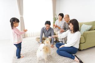 家族で犬と遊ぶ幸せな三世代ファミリーの写真素材 [FYI04704389]