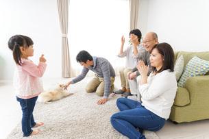 家族で犬と遊ぶ幸せな三世代ファミリーの写真素材 [FYI04704401]