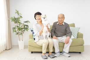 犬を飼うシニア夫婦の写真素材 [FYI04704470]