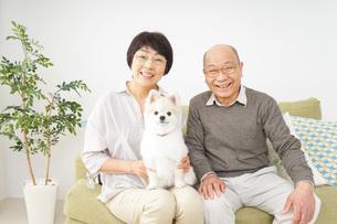 犬を飼うシニア夫婦の写真素材 [FYI04704480]